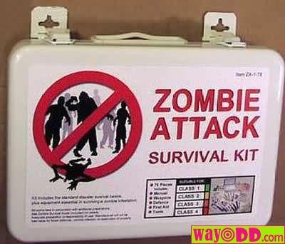 funny-pictures-zombie-survival-kit-1cs.jpg
